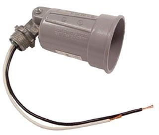 RACO 56060 PAR LAMPHOLDER GRY
