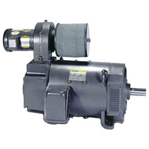 Baldor Electric Company D2050P-BV