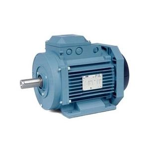 Baldor Electric Company MM06184-AP