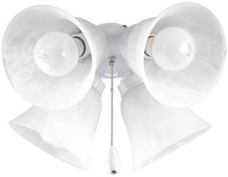 P2610-30 PRO 4-60w MED FAN LIGHT KIT