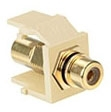 40830-BIE LEV RCA SNAP IN GOLD W/BLACK STRIPE QUICKPORT IVORY