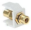 40830-BWE LEV RCA SNAP IN GOLD W/BLACK STRIPE QUICKPORT WHITE