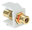 40830-BWR LEV RCA SNAP IN GOLD W/RED STRIPE QUICKPORT WHITE
