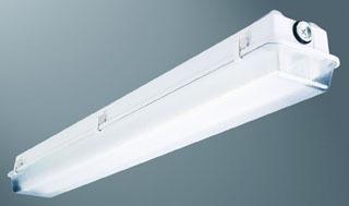 VT2-248HODR-120V-EB21-WL-U MLX 2-LAMP HO 4' VAPORTITE
