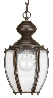 P5565-20 PROGRESS 1-100W MED HANGING LANTERN 78524717246