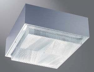 Canopy Luminaire