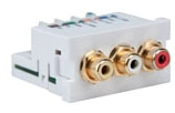 Multimedia Outlet System Connector Module