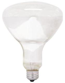 G 65R40/FL/MI/6PK 120V LAMP PRO# 14016