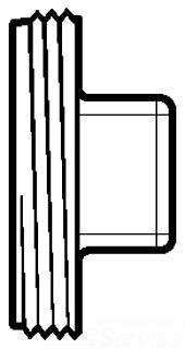 3 PVC DWV PLUG 05941