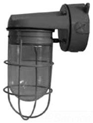 EGS WFW1050G WALL FIXTURE 100W