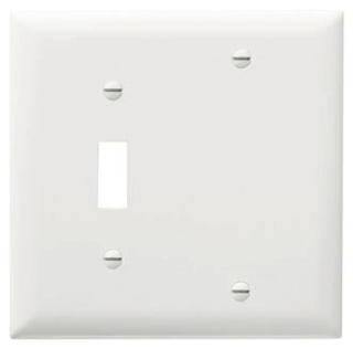 Pass & Seymour TP113-W 2-Gang 1-Toggle 1-Blank White Nylon Standard Combination Unbreakable Wallplate
