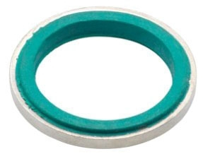 Bridgeport SR-200 2 Inch Sealing Ring with Retainer