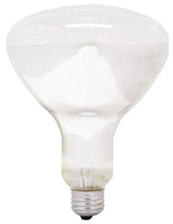 GE 250R40/1-6PK-120 CLR HEAT LAMP