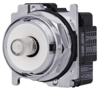 CH 10250T181N INDICATING LIGHT 30.5