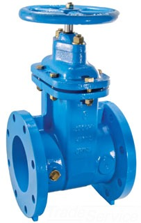 "405RW 3"" WATTS FLANGED GATE VALVE EPOXY COATED CI, NRS (0700104) LEAD COMPLIANT"