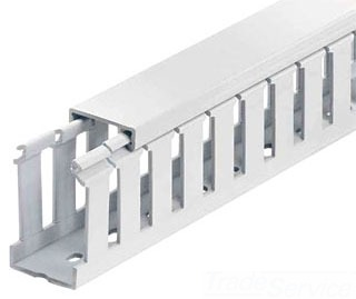 THOMAS & BETTS TY15X4WHW6 WIDE FINGER, SLOTTED TYPE; HALOGEN FREE POLYPHENYLENE ETHER MATERIAL; WHITE FINISH; 6 FT; 1.5 INCH; 1.5 WIDTH IN INCH; 4 INCH; 4 HEIGHT IN INCH; 6 LENGTH IN FT; UL, CSA APPROVAL; 60 FT STANDARD PACKAGE; COVER INCLUDED; TY-DUCT[R] BRAND; TY MODEL