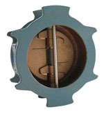 """8"""" W-920-W Flanged Check Valve, Ductile Iron"""