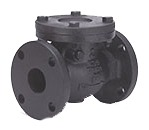 "6"" Cast Iron Swing Check Valve - Flanged, 200 psi WOG, 125 psi SWP"