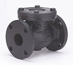 """2-1/2"""" Cast Iron Swing Check Valve - Flanged, 200 psi WOG, 125 psi SWP"""