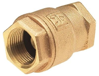 """1"""" Cast Bronze Spring Loaded Lift Check Valve - UltraPure, FPT, 250 psi WOG"""