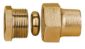 "2"" Brass Straight Coupling"