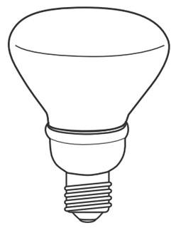 tcp 2R3014 TCP 14W R30 2700K FLUOR LAMP