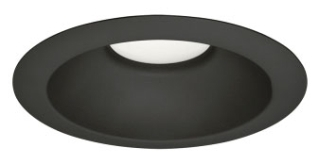 prg P8071-31/30K PRG LED BLACK CAN TRIM