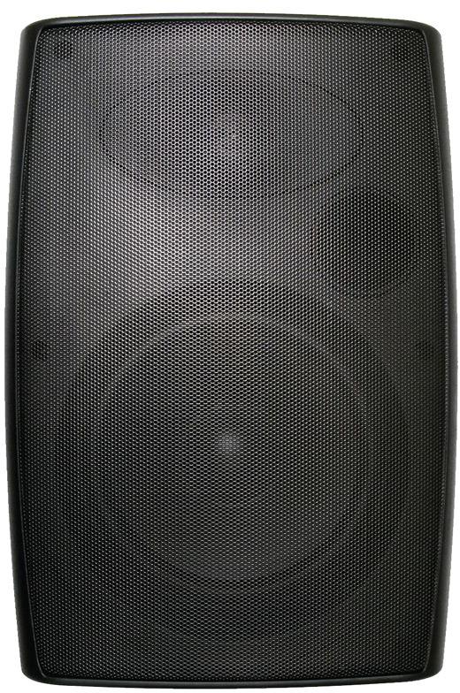 CA 5.25in Outdoor Cabinet Speaker Black