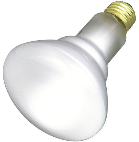 Indoor Flood Lamp 65 Watt (Case 12)