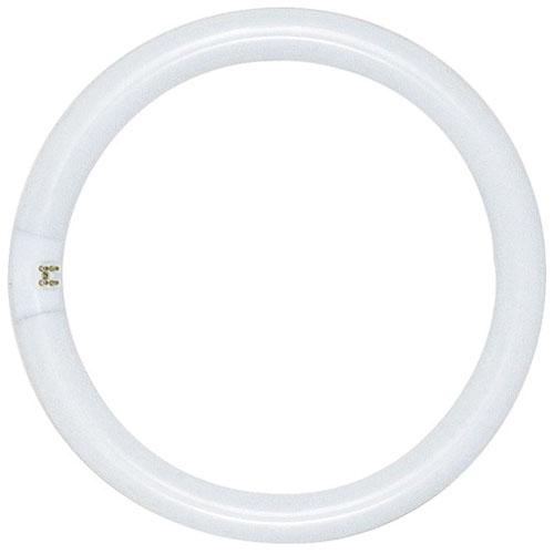"20 Watt Circline Fluorescent Bulb 6-1/2"" Dia."
