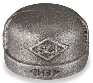 1/2 BLACK CAP
