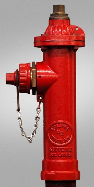 """2"""", FPT x FPT, 3' 6"""" Rough-In, Lead-Free, Epoxy Coated Steel, Non-Freezing, Post/Yard Hydrant"""