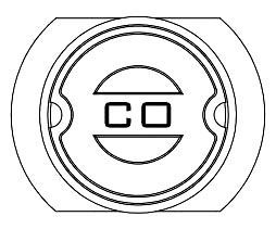 "10"" x 12"" Ring, Cast Iron, Co, Meter Box"