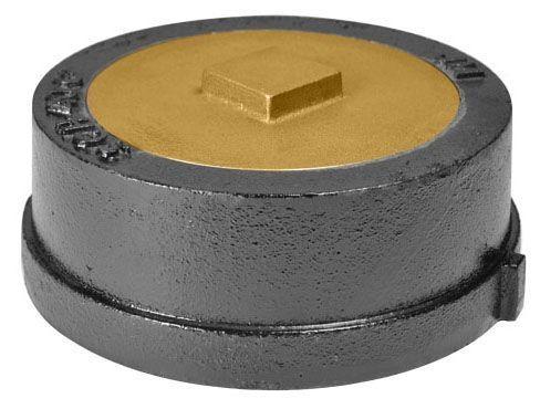 "6"", Brass Plug, Round Top, Floor, Panella Cleanout"