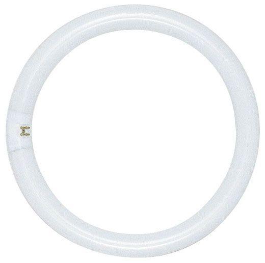 32 W T9 62 CRI Cool White Circline Fluorescent Lamp - 1930 Lumen, G10q 4-Pin