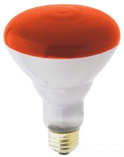 WEST 65BR30/FL 65W 130V INDOOR FLOOD LAMP 0416500
