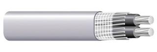 SEU431000 - COP